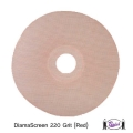 DiamaScreen 220 Grit Screen Set (2)