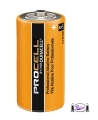 C Cell Alkaline Batteries (Pro Cell)