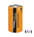 D Cell Batteries (Duracell)