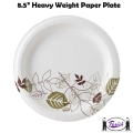 Paper Plates - Heavy Weight (Pathways)