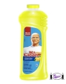 Mr. Clean Citrus Antibacterial Cleaner