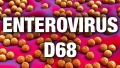Combating Enterovirus D68